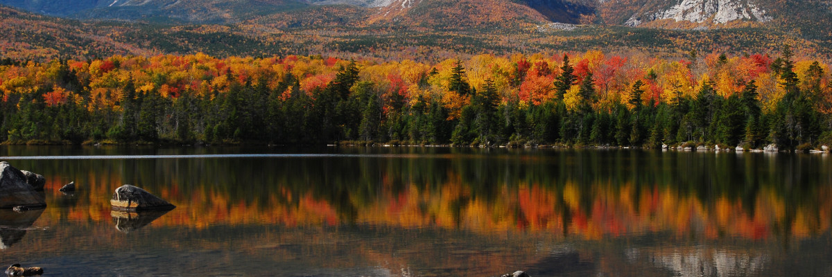 Maine Autumn